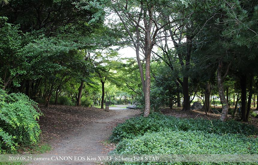 梅小路公園、河原遊び場への道