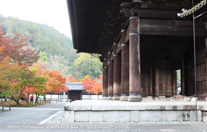 南禅寺山門の柱と紅葉(2019.11.23 撮影)