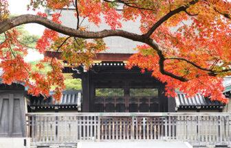 秋の京都御苑(京都御所)