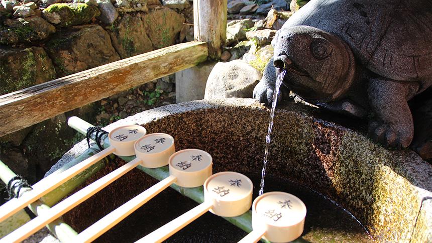 松尾大社 亀の井の井戸