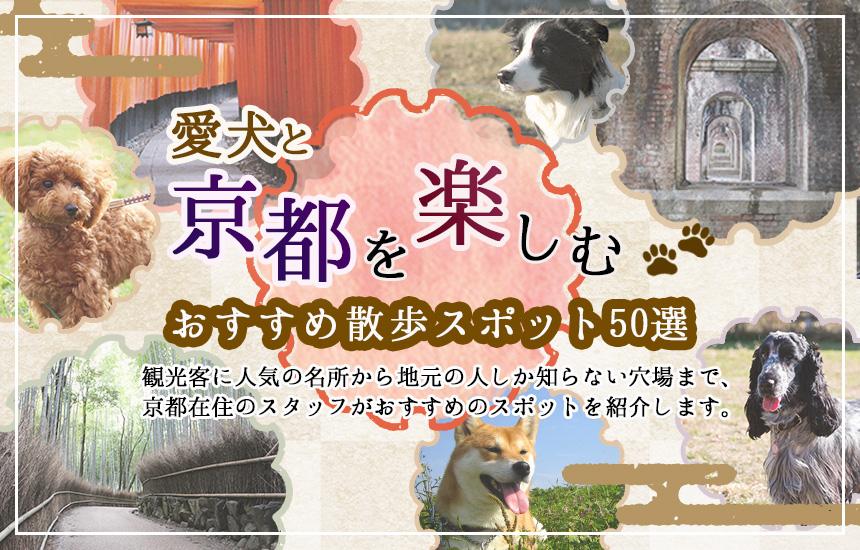 愛犬と京都、おすすめ散歩スポット50選