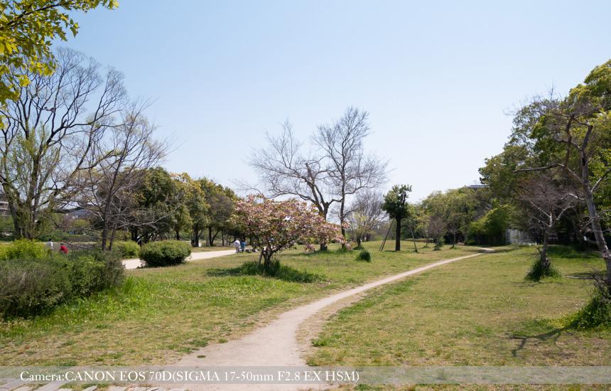 鴨川公園(賀茂大橋西詰付近)