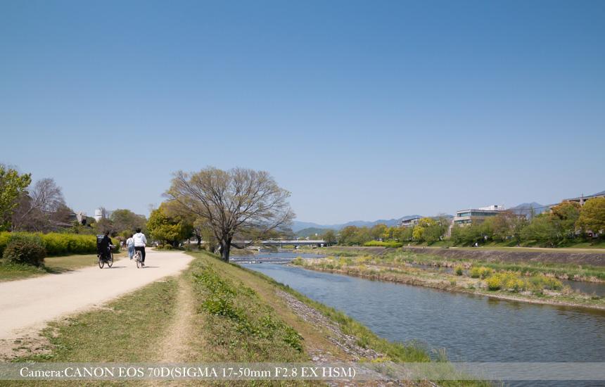 河川敷の遊歩道