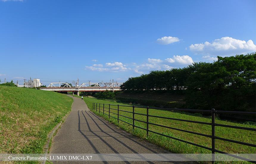 桂大橋からJR鉄橋までの散歩道