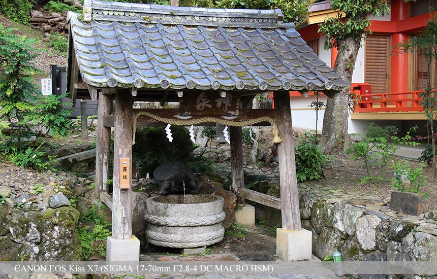 松尾大社 神泉亀の井