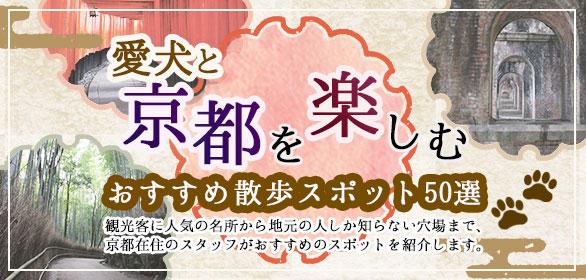愛犬と京都を楽しむ!おすすめ散歩スポット50選